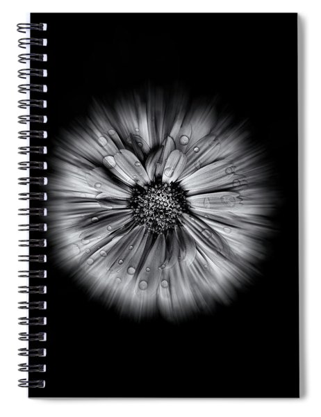 Backyard Flowers In Black And White 10 Flow Version Spiral Notebook