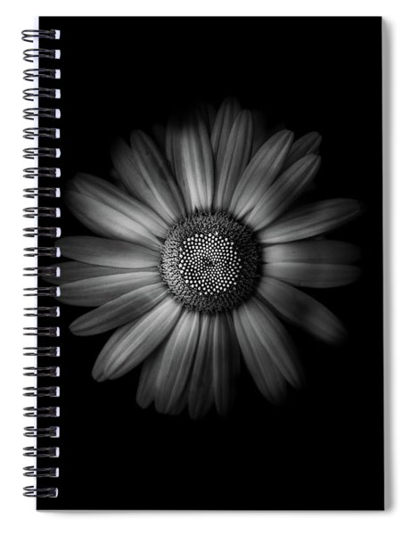 Backyard Flowers In Black And White 31 Spiral Notebook