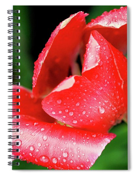 After The Storm Spiral Notebook