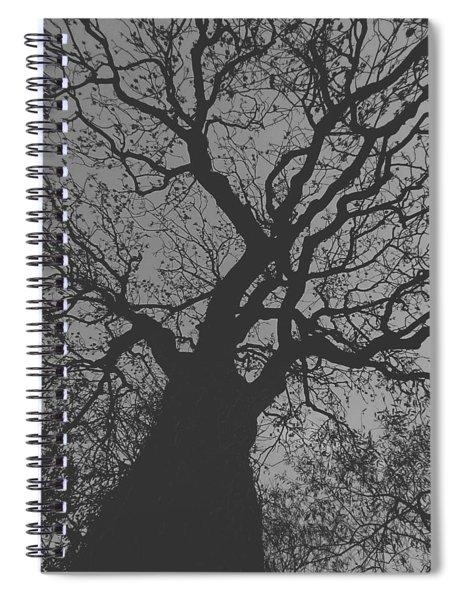Ash Tree Spiral Notebook