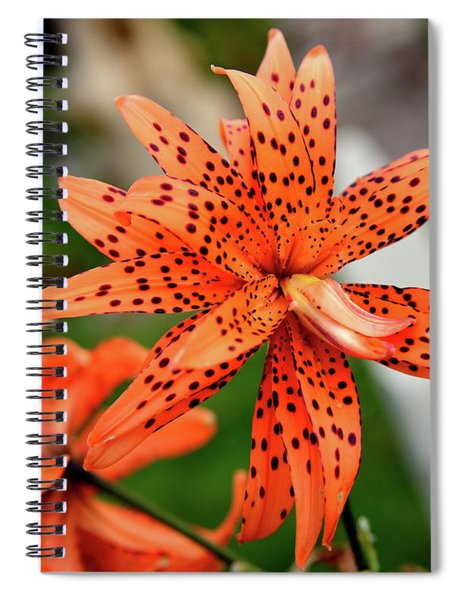 Asian Tiger Lily Spiral Notebook