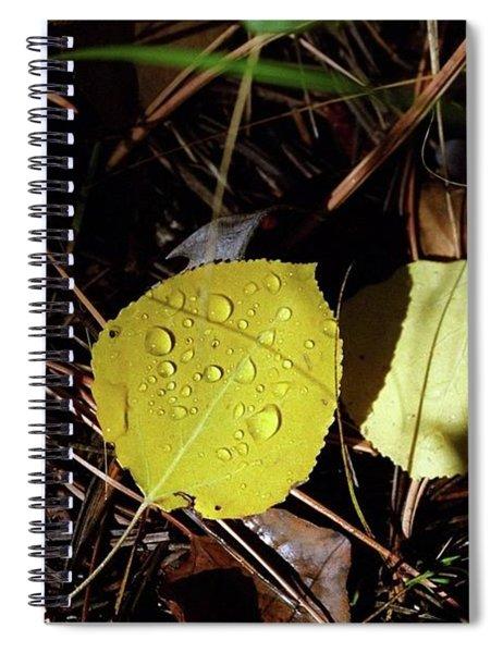 Aspen Dew Spiral Notebook