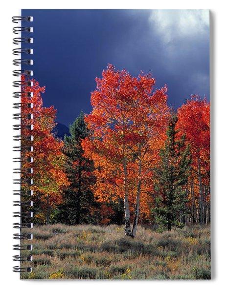 Aspen Light Spiral Notebook