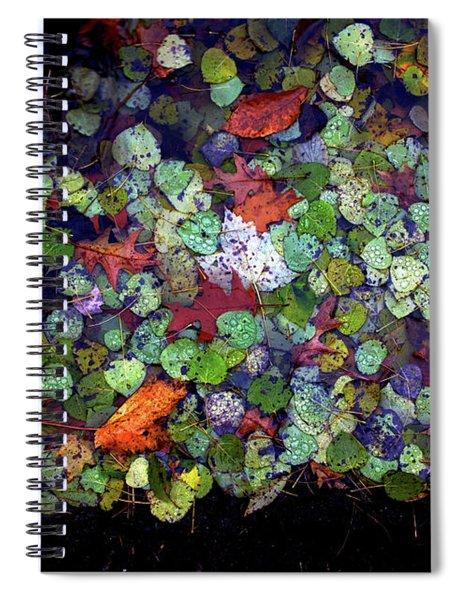 Aspen Puddle Spiral Notebook