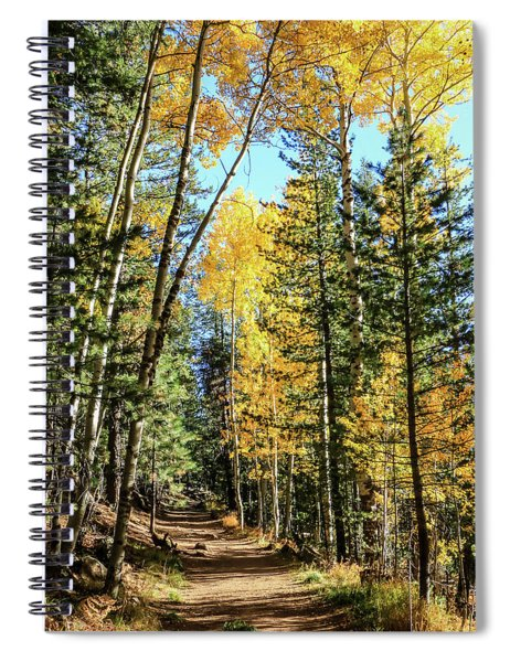 Aspen Trail Spiral Notebook