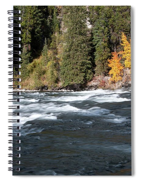 Aspens At Lehardy Rapids Spiral Notebook