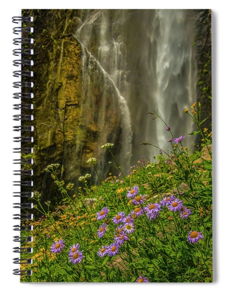 Asters And Comets Spiral Notebook