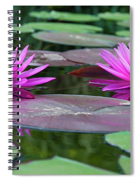 At Longwood Gardens - Water Lillies  Spiral Notebook