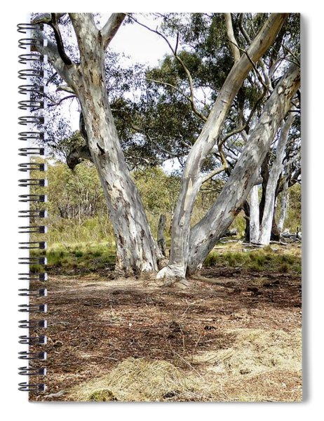 Australian Bush Scene Spiral Notebook