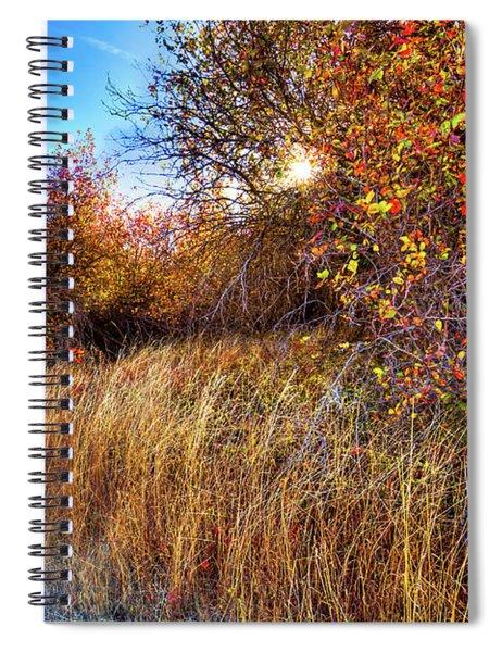 Autumn At Magpie Forest Spiral Notebook