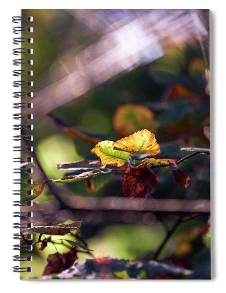 Autumn Beginnings Spiral Notebook