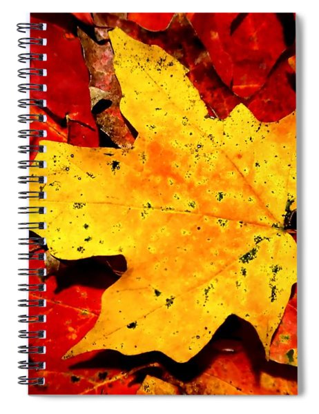 Autumn Beige Yellow Leaf On Red Leaves Spiral Notebook