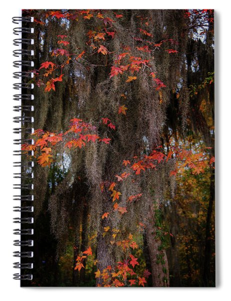 Autumn Color In Spanish Moss Spiral Notebook
