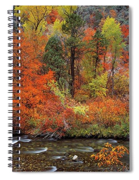 Autumn Creek Spiral Notebook