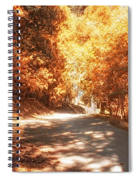 Spiral Notebook featuring the photograph Autumn Forest by Alison Frank