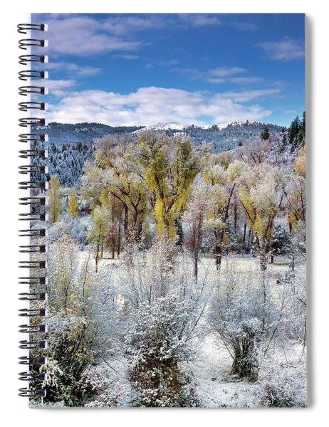 Autumn Frost And Texture Spiral Notebook