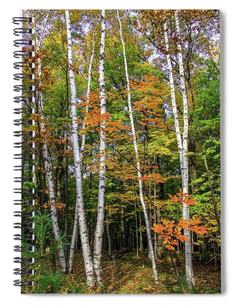 Autumn Grove, Vertical Spiral Notebook