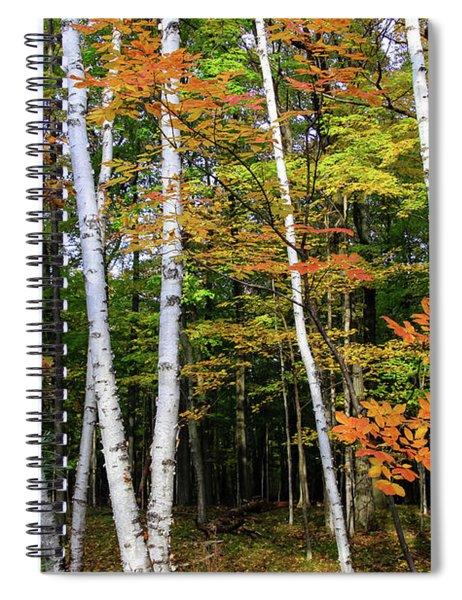 Autumn Grove, Wisconsin Spiral Notebook