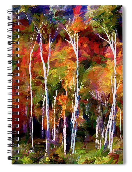 Autumn In The Birches Spiral Notebook