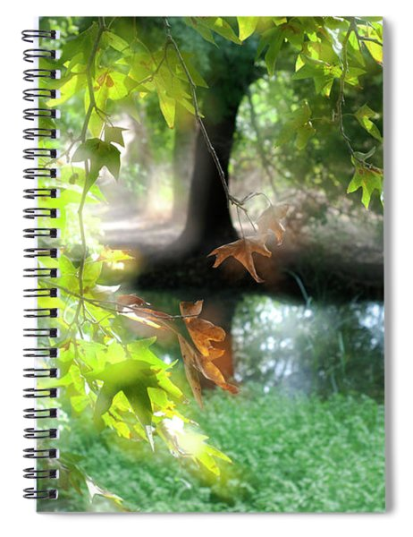 Autumn Leaves In The Morning Light Spiral Notebook
