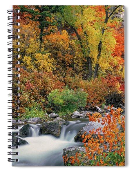 Autumn Magic Spiral Notebook