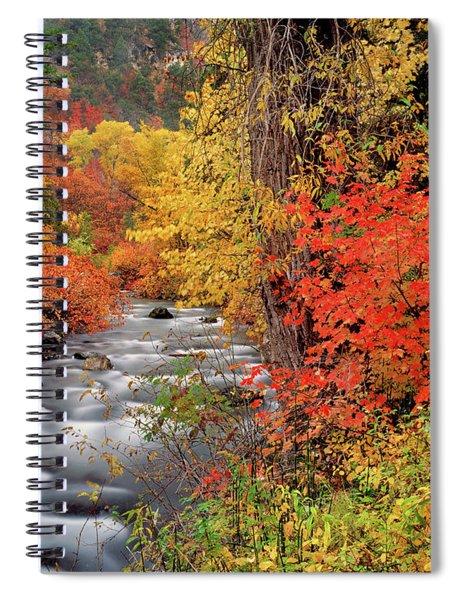 Autumn Rapids Spiral Notebook