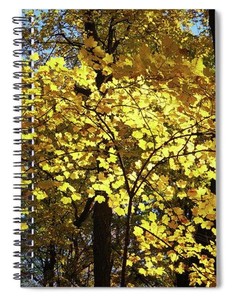 Autumn Shades Of Yellow Spiral Notebook