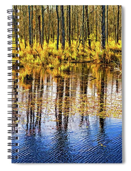 Autumn Slough 4 - Paint Spiral Notebook
