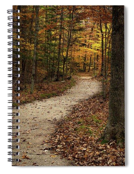Autumn Trail Spiral Notebook