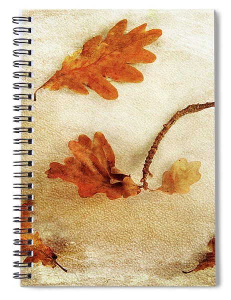Autumn Twist Spiral Notebook