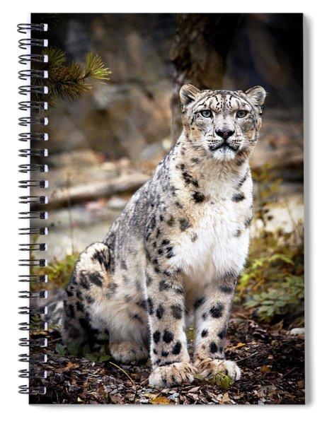 Autumnalleopard Spiral Notebook