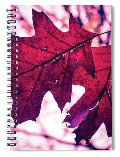 Autum's Ending Spiral Notebook