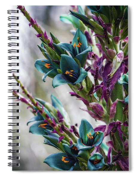 Azure Dreams Spiral Notebook
