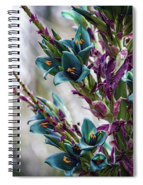 Azure Dreams Spiral Notebook