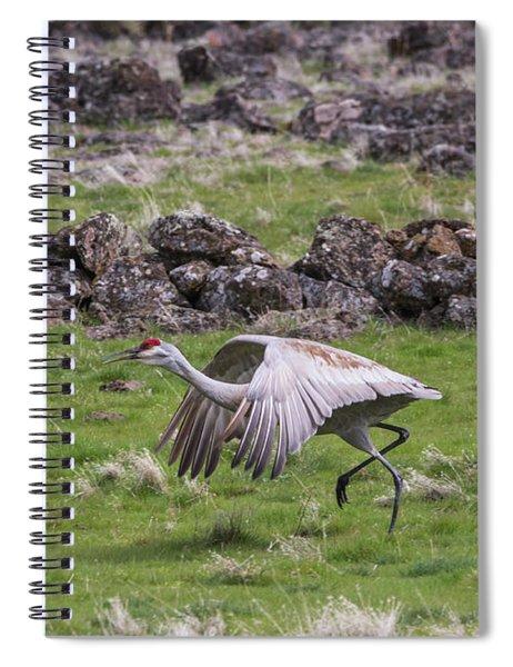 B27 Spiral Notebook