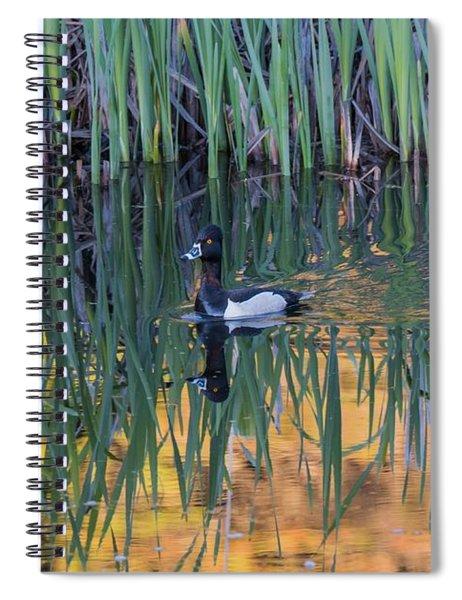 B32 Spiral Notebook