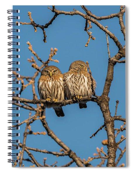 B36 Spiral Notebook