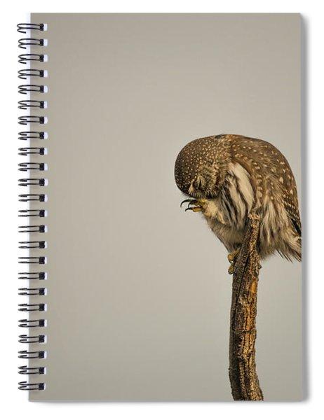 B41 Spiral Notebook