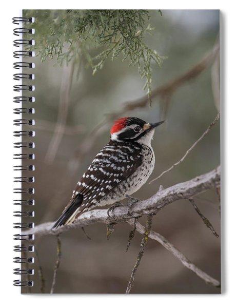 B42 Spiral Notebook