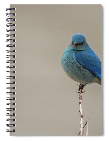 B52 Spiral Notebook