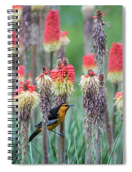 B58 Spiral Notebook