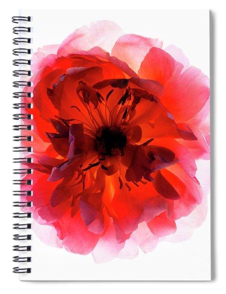 B760/1834 Spiral Notebook