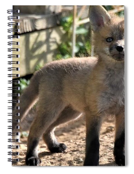 Baby Fox Spiral Notebook