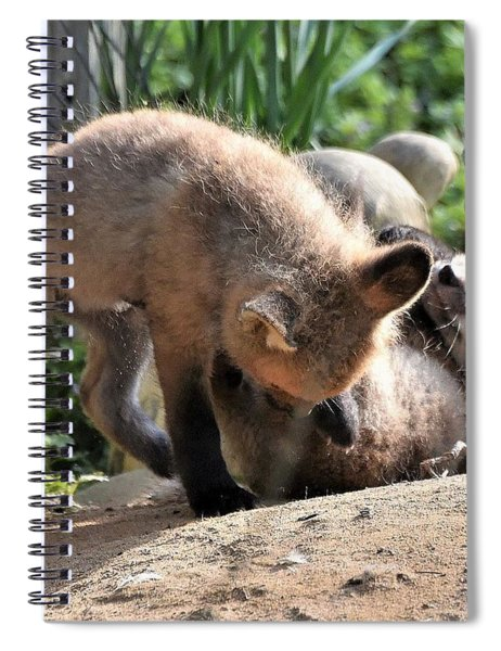 Baby Foxes Spiral Notebook