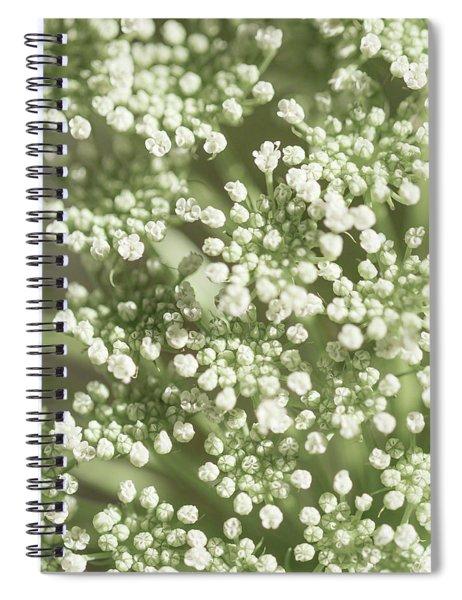 Babys Breath 1308 Spiral Notebook