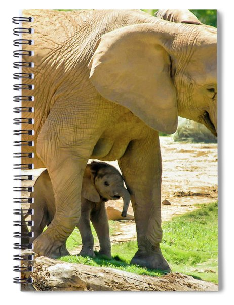 Baby's Safe House Spiral Notebook