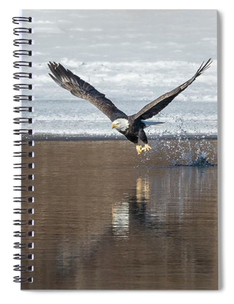 Bald Eagle 2018-12 Spiral Notebook