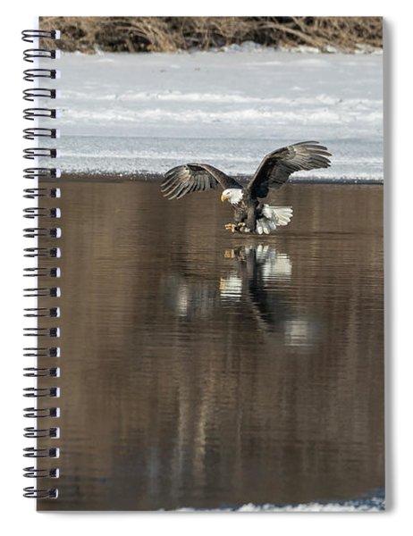 Bald Eagle 2018-14 Spiral Notebook