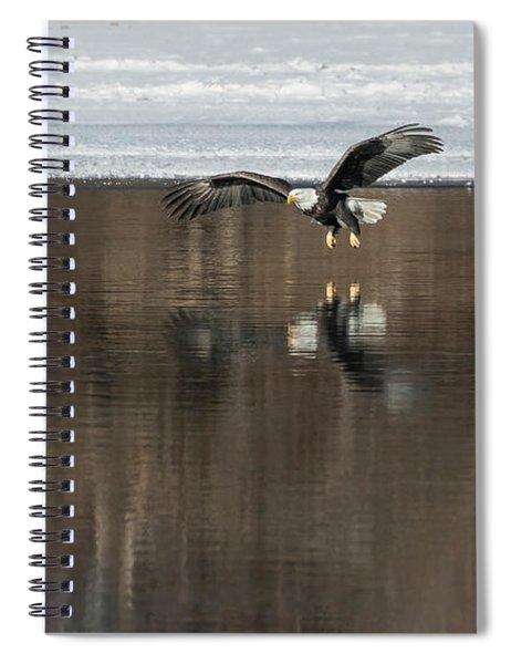 Bald Eagle 2018-15 Spiral Notebook