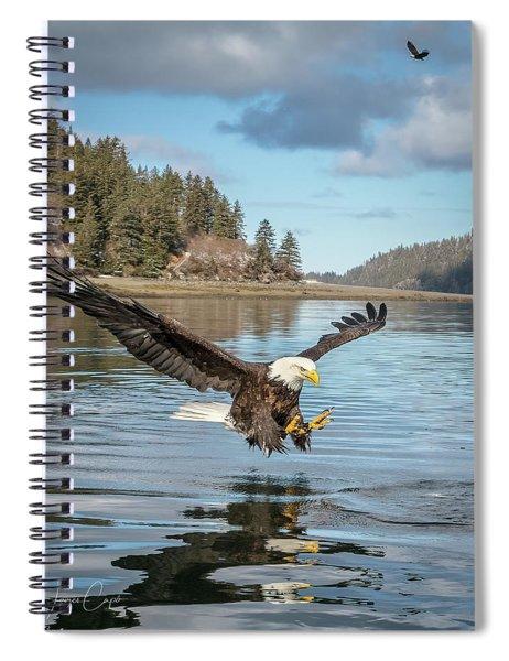 Bald Eagle Fishing In Sadie Cove Spiral Notebook